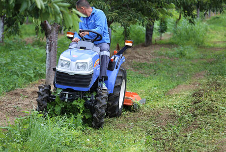Flat mowers for orchards/garden cleaning